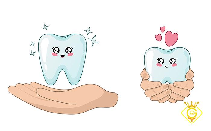 طراحی سایت شرکتی با کیفیت برای دندانپزشکان