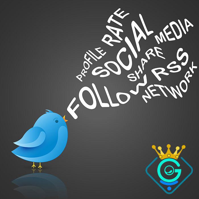 بازیابی در شبکه های اجتماعی از جمله توئیتر - گلزاروب